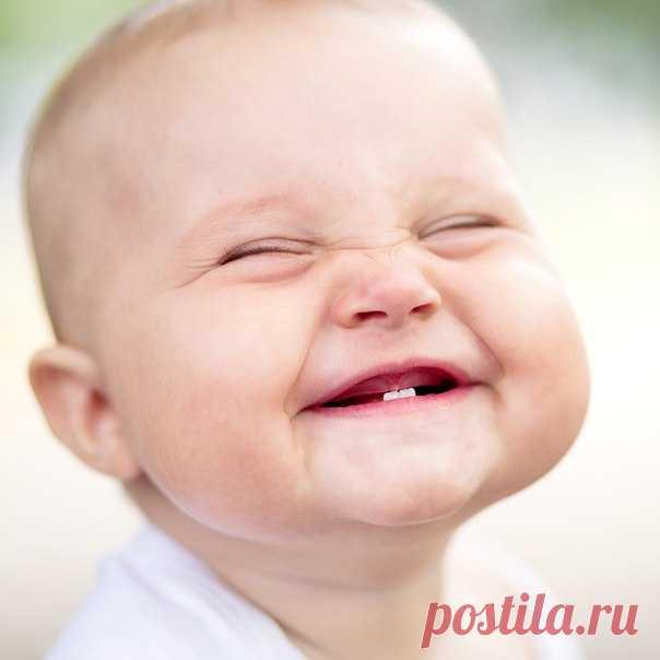 Картинки, улыбка фото смешная картинка