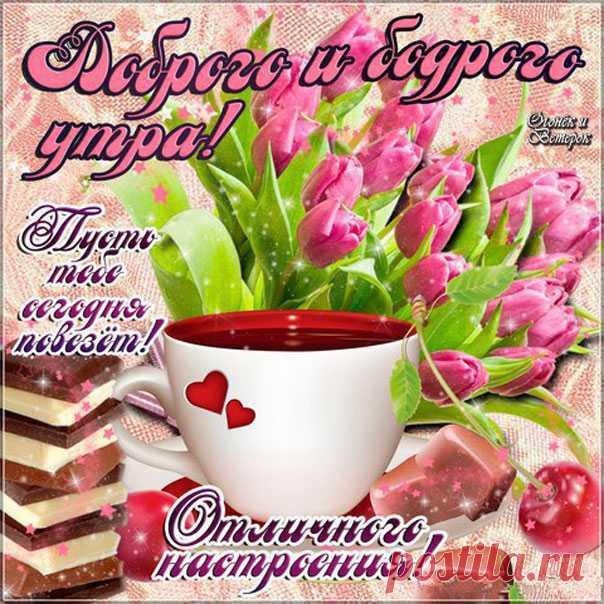 Картинки, доброе утро открытка с тюльпанами