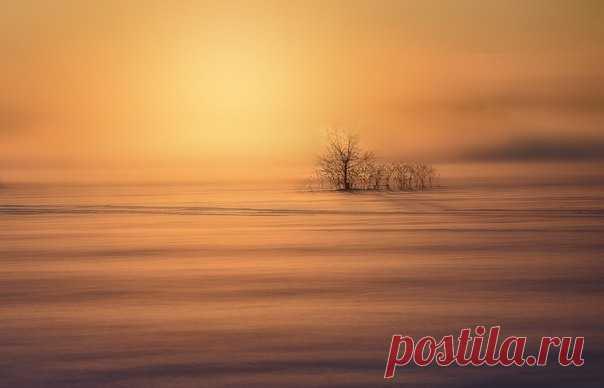 Туманный восход. Автор фото – Владимир Штыриков: nat-geo.ru/photo/user/122119/ Доброе утро!