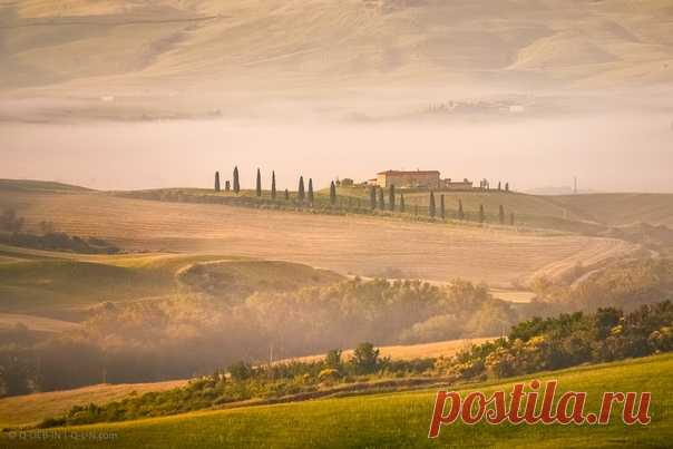 Туманное утро в Тоскане, Италия. Фотограф – Евгений Самученко, или Q-lieb-in: nat-geo.ru/photo/user/52530/