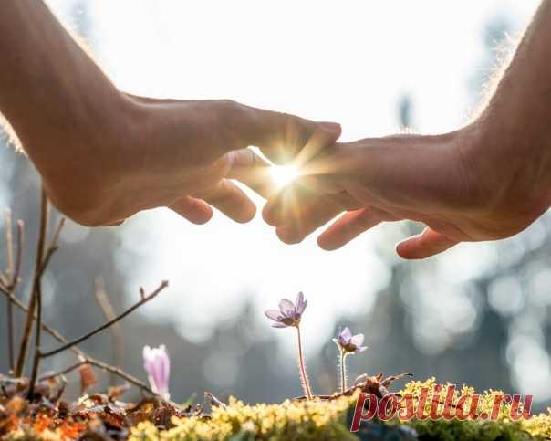 Солнце светит вовсю. Пахнет весной. Но пахнет не в носу, а где-то в душе, между грудью и животом...  © Антон Павлович Чехов