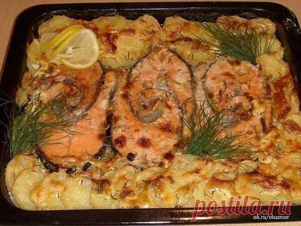 Запекаем РЫБУ — 6 рецептов!  1. Обалденная вкусная запеканка картофельная с рыбкой  Получается изумительная хрустящая сырная корочка! И рыбка, и картошка в сливках со специями приобретают нежный пикантный вкус! Быстро, легко и вкусно! Рецепт для уютного семейного ужина, все будут довольны и сыты.  Ингредиенты:  — 5-6 картофеля — 500 г рыбы — 2 помидора — 1 большая луковица — сыр — зелень — сливки  Приготовление:  Многие соблюдают пост, поэтому сливки можно заме...