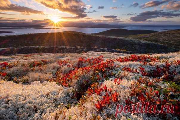 Закат над озером Имандра, Кольский полуостров. Фотограф – Игорь Скляров: nat-geo.ru/community/user/200318/