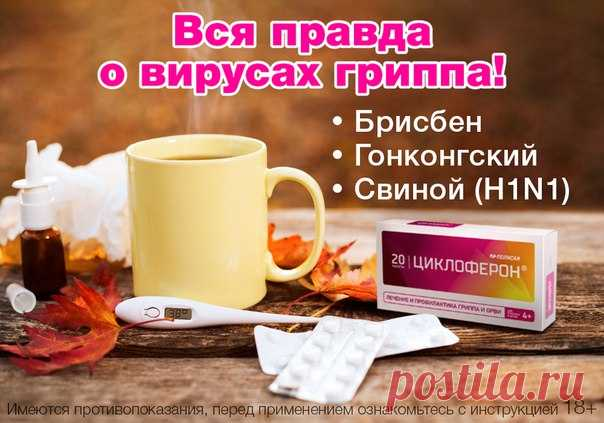 According to forecasts of WHO, during a season of 2017 — 2018 in the territory of Russia 3 strains of flu can circulate: a virus of group To (Brisbane), a virus of group A — H3N2 (Hong Kong) and the A\/H1N1 subtype (Michigan or pork).\u000aWhat are these strains dangerous by?\u000aThe B\/Brisbane virus (In \/ Brisbane) for today maloizuchen, is difficult diagnosed owing to not clear symptoms. It is considered that flu B is less dangerous, than the strains relating to group A it is easier transferred both by adults, and children, and not characterized...