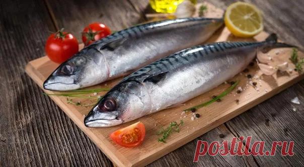 Рыбка просто объедение: не успеваю покупать скумбрию. Делюсь 5 рецептами, которые я готовлю из скумбрии (просто и дёшево) | Сейчас Приготовим! | Яндекс Дзен