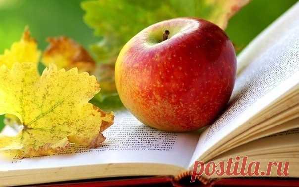 Как и когда нужно есть фрукты и ягоды? - Журнал Советов Многие из нас считают, что употреблять фрукты означает: купить их, порезать и положить в рот. Но не все так просто, как может показаться на первый взгляд. Когда правильно есть фрукты и ягоды? Если вы будете употреблять фрукты правильно, то откроете секрет красоты, долголетия и здоровья, а также несравненный источник жизненной энергии и бодрости. Для этого […]