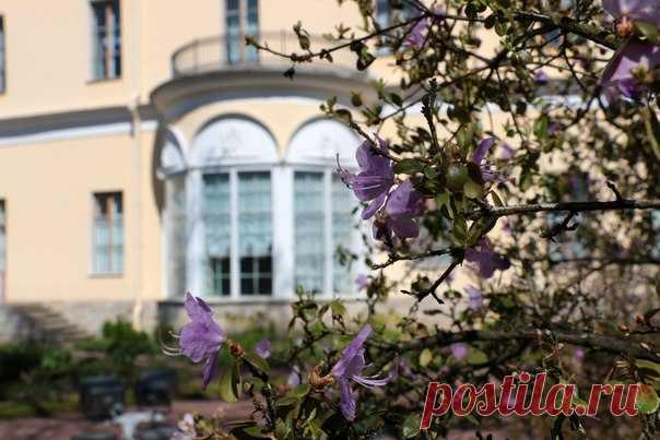 Propio jardincito que florece de la imperatriz María Fiódorovna. Pávlovsk, San Petersburgo