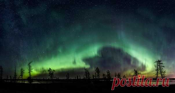 Полярное сияние над лесотундрой, Ямал. Автор фото — Камиль Нуреев: nat-geo.ru/photo/user/45458/