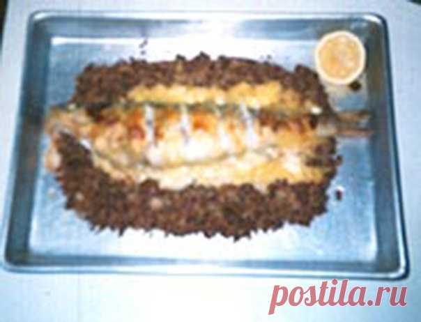 Судак, фаршированный грибами на гречке  Ингредиенты: судак — 1 шт. шампиньоны — 300 г. сыр — 100 г. соль репчатый лук — 1 шт. гречневая крупа — 1 шт. сметана — 1 стакан репчатый лук — 2-3 шт.  Способ приготовления: Судака вымыть, отрезать голову и через получившееся отверстие аккуратно выпотрошить, еще раз промыть. Рыбу посолить, поперчить и сбрызнуть соком лимона. Шампиньоны помыть, разрезать на 4 части и обжарить до золотистого цвета вместе с луком. Сварить гречневую каш...