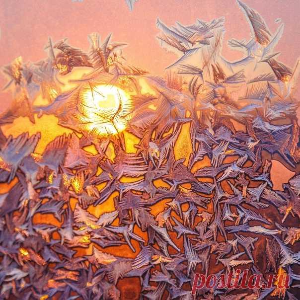 «Летят журавли» Ледяной узор, запечатлённый морозным утро в Валдайском национальном парке. Снимал Тимофей Шутов: nat-geo.ru/community/user/183459