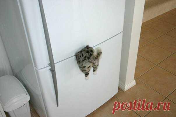Магнитик на холодильник