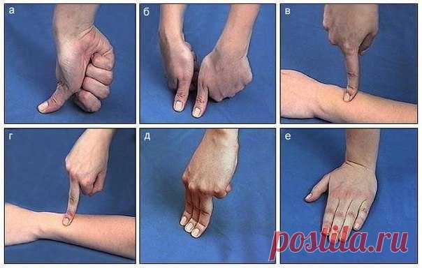 Лечим себя. Упражнения для пальцев (шиацу).  Наши пальцы могут лечить наше тело. Гибкость и подвижность пальцев свидетельствует о состоянии внутренних органов.Причём каждый палец отвечает за определенные органы. В японской лечебной системе шиац…