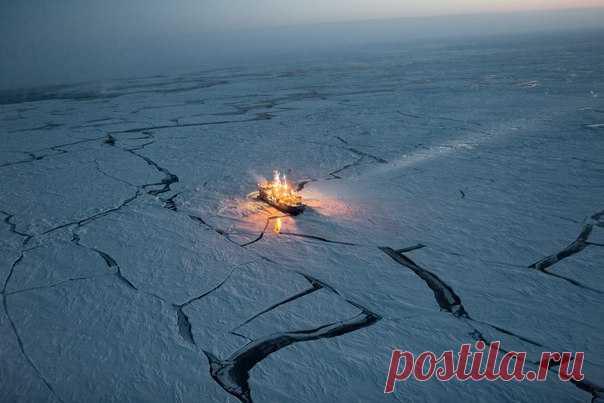 «Потепление в Арктике стало казаться мне чем-то совершенно нереальным — пальцы ног онемели от холода. Но у нас под ногами лежал полуметровый слой снега — вдвое больший, чем в среднестатистическую зиму». Почему много снега – это плохо и как лед в Арктике влияет на будущее нашей планеты – в материале Энди Айзаксен. #NGЛонгрид@natgeoru