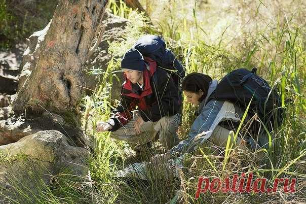 Если заблудился в лесу Главная опасность, с который сталкивается заблудившийся человек – страх. Выброс адреналина в кровь бывает настолько мощным, что даже взрослый человек начинает действовать вопреки всякой логике.Некотор…