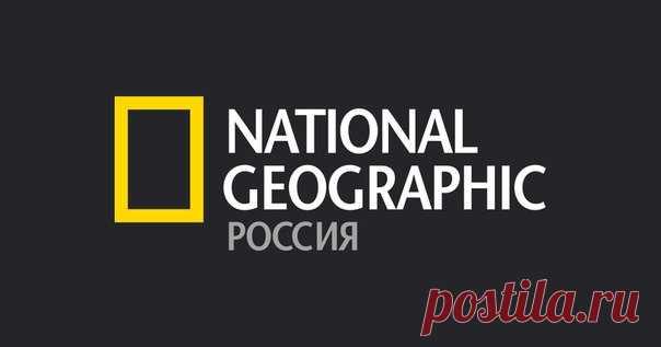 El 9 de octubre en el MGU el redactor científico «National Geographic Rusia» Andrei Zhuravlev contará del que vivía en Siberia y Suráfrica hace medio mil miliones años. La conferencia pasará a las 16:00 en el cuerpo Shuvalovsky (el auditorio В4) en los límites del festival la Ciencia 0 +. ¡La entrada libre, le esperamos!