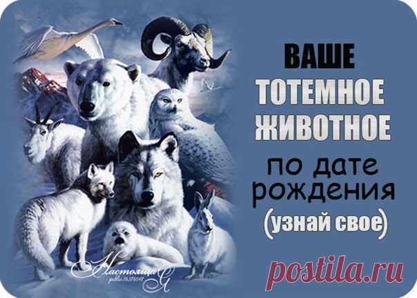 КАКОЕ ЖИВОТНОЕ СООТВЕТСТВУЕТ ВАШЕМУ ДНЮ РОЖДЕНИЯ И ЧТО ОНО ОЗНАЧАЕТ   Животное по дате рождения: 1 - 9 января – Собака; 10 - 24 января – Мышь; 25 - 31 января – Лев; 1 - 5 января – Кошка; 6 - 14 февраля – Голубь; 15 - 21 февраля – Черепаха; 22 - 28 февраля – Пантера; 1 - 12 марта – Обезьяна; 13 - 15 марта – Лев; 16 - 23 марта – Мышь; 24 - 31 марта – Кошка; 1 - 3 апреля – Собака; 4 - 14 апрель – Пантера; 15 - 26 апреля – Мышь; 27 - 30 апреля – Черепаха; 1 - 13 мая – Обезьяна...