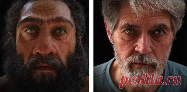 Не хотите взглянуть в лицо далеким-предалеким предкам?