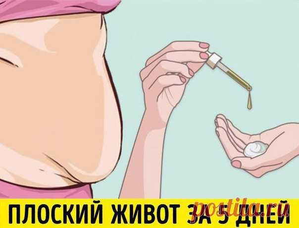 😃 ПРАВИЛА ПОХУДЕНИЯ, КОТОРЫЕ ДОЛЖНА ЗНАТЬ КАЖДАЯ ЖЕНЩИНА   1) Жир не животе не сжигается во время того, когда вы работаете над мышцами пресса. Пресс будет, но под слоем жира. Чтобы на животе сгорал жир...   Показать продолжение в источнике...