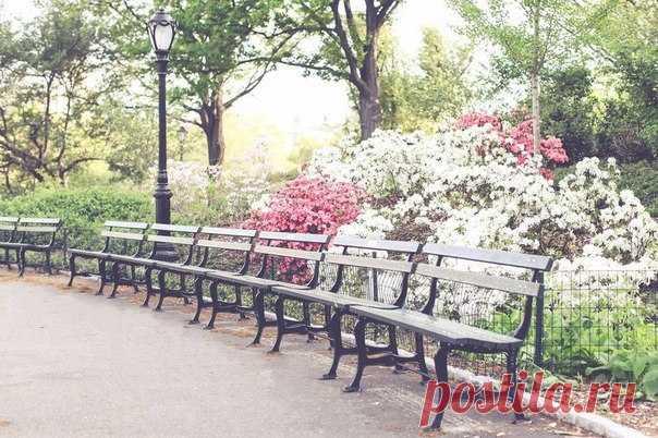 Весенний Нью-Йорк, США