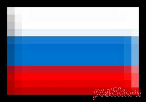 На заметку! Как правильно выращивать гортензию | 6 соток