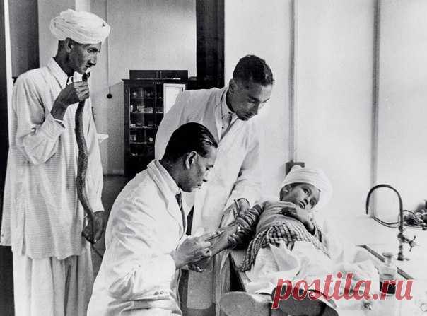 Доктора осматривают мальчика. Слева стоит отец; он держит в руках рептилию, укусившую его сына. Драматичное фото было сделано в Гималаях почти 80 лет назад.