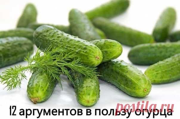 Бесценный огурец. 12 причин всегда иметь в доме зеленый овощ.