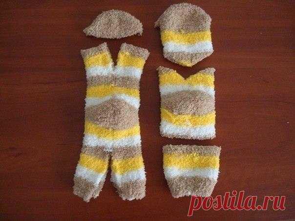 Kittens from socks