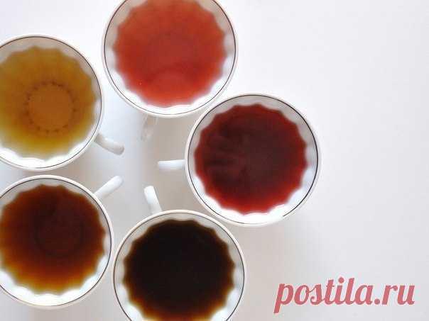 Интересные новости     В борьбе с целлюлитом и отеками - пейте дренажные чаи!