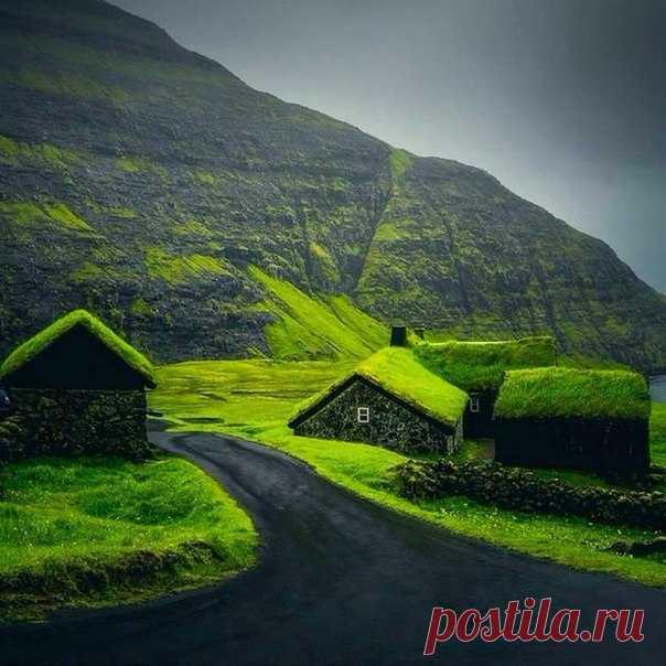 La vida en la Islandia