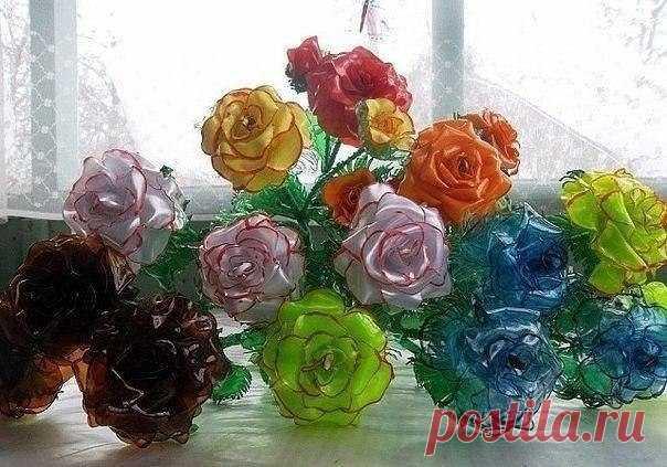 Roses from plastic bottles.