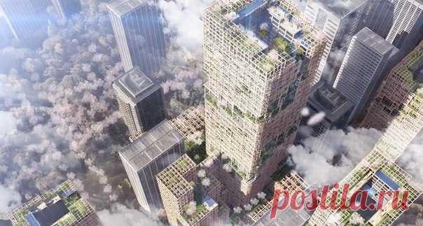 Японцы потратят 600 миллиардов иен на реализацию уникального проекта – деревянного небоскреба, который вырастет в центре Токио в 2041 году (если все пойдет по плану).