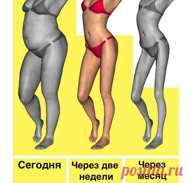 🏌ПРАВИЛА ПОХУДЕНИЯ, КОТОРЫЕ ДОЛЖНА ЗНАТЬ КАЖДАЯ ЖЕНЩИНА  1) Жир не животе не сжигается во время того, когда вы работаете над мышцами пресса. Пресс будет, но под слоем жира. Чтобы на животе сгорал жир...  Показать продолжение в источнике...