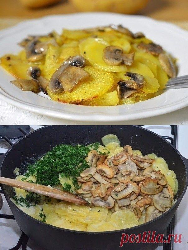 как приготовить грибы в казани