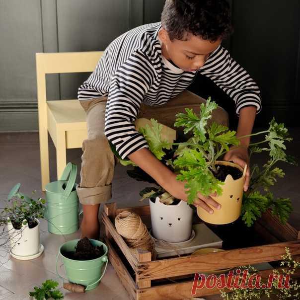 Откройте для ваших детей волшебный мир садоводства. Им понравится, наблюдать за тем, как маленькое семя превращается в красивое зеленое растение! Симпатичные элементы для детской комнаты уже в H&M HOME. 🌿 #HMHome