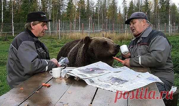 Не может же русский человек быть счастлив в одиночку, ему нужно участие окружающих, а без этого он не будет счастлив. (В.Даль)