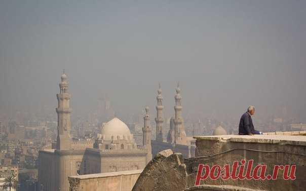 «Аэрофлот» возобновит регулярные рейсы по маршруту Москва — Каир — Москва с 11 апреля. Также на линии хочет работать Egypt Air, пока ждущий разрешения Росавиации.