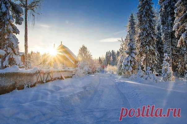 Морозное утро в дачном поселке Морово, Сыктывдинский район. Автор фото — Александр Рум: