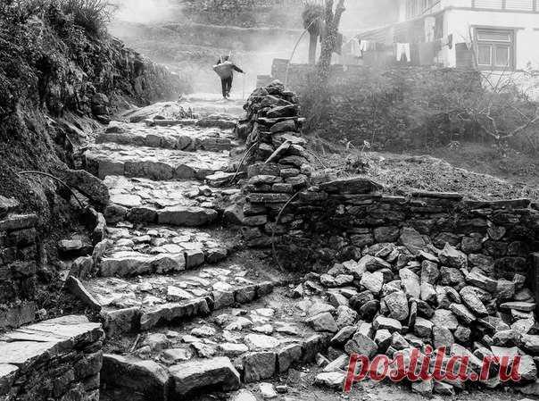 Гималайскими тропами. Снимок сделал Константин Орлов в Непале. Больше его фотографий можно посмотреть по ссылке: nat-geo.ru/photo/user/123748/