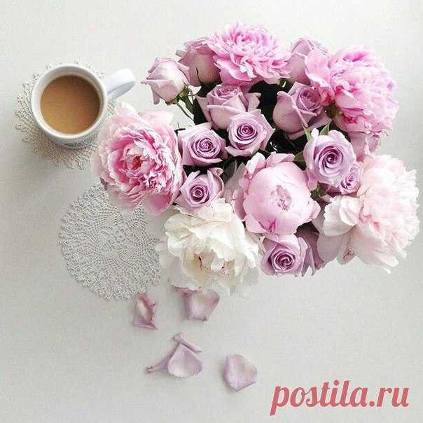 Доброе утро! Нежных вам выходных!