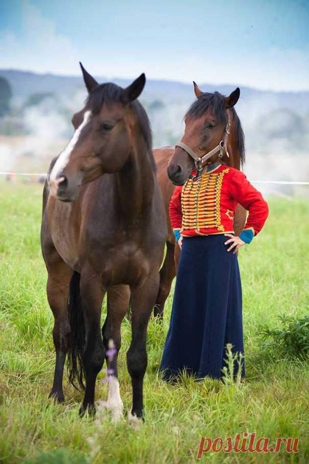 Сделать, приколы картинки с лошадью