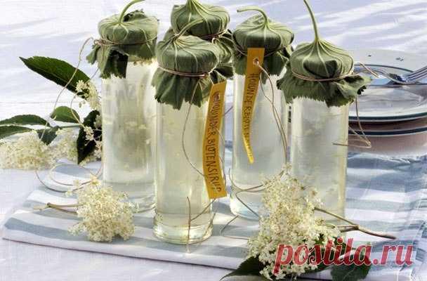 ༺🌸༻Сироп из цветов бузины