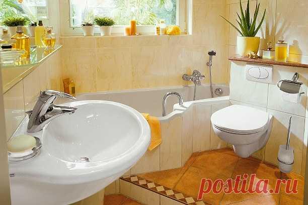 Шик, блеск и чистота в туалете! Как чистить самое популярное место в доме | Goodhouse.ru