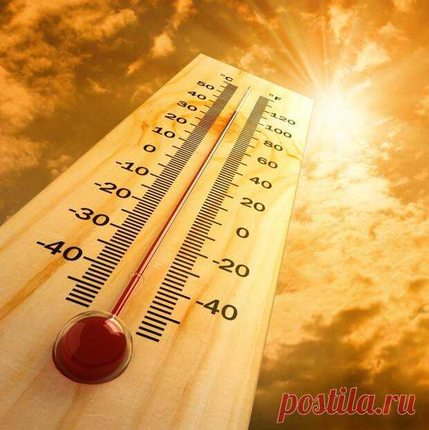 Что делать, если случился тепловой удар - Будь в форме! - медиаплатформа МирТесен ТЕПЛОВОЙ УДАР опасен для здоровья. Он возникает вследствие сильного перегрева и вызывает нарушение терморегуляции тела. При тепловом ударе необходимо оказать человеку незамедлительную помощь. Тепловой удар или гипертермия – довольно опасное для человеческого здоровья состояние, поэтому
