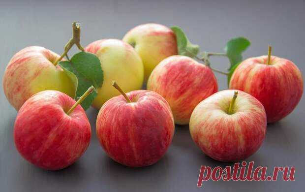 Мармелад из яблок: супер-десерт без калорий! - SimpleSlim - медиаплатформа МирТесен Домашний мармелад – вкусное и полезное лакомство, которое не навредит вашей фигуре, если правильно его приготовить. Пектин, который содержится в яблоках, помогает снизить уровень холестерина, восстанавливает углеводный и липидный обмен, улучшает пищеварение и очищает. Чтобы приготовить мармелад из