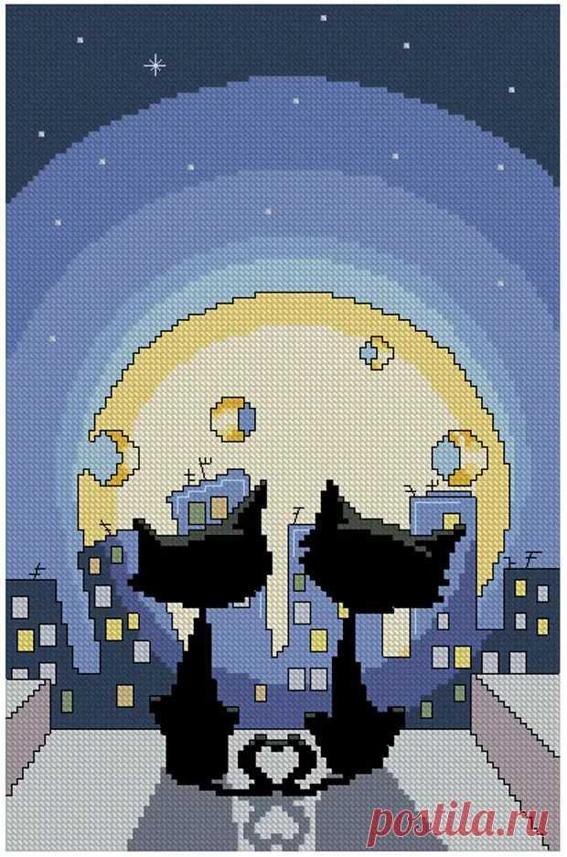 Котики и сырная луна - Домоводство - медиаплатформа МирТесен