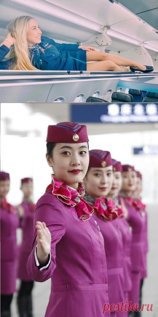 Стюардессы: красавицы, героини, озорные девчонки? Как выглядят бортпроводницы разных авиакомпаний | Соло-путешествия | Яндекс Дзен