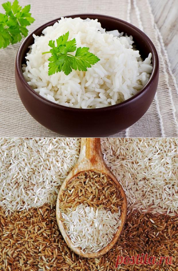 Кулинарные секреты: как правильно готовить разные виды риса - Досуг - Кулинария на Joinfo.ua