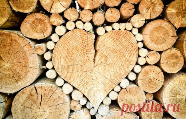 Любовный гороскоп на неделю 4-10 ноября 2019: праздник жизни у Рыб и неприступность Дев