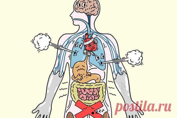 Как стресс влияет на организм - Будь в форме! - медиаплатформа МирТесен Стресс негативно отражается на функциях всего организма. Он может поразить любую его систему. Среди них скелетно-мышечная, дыхательная, сердечно-сосудистая, эндокринная, желудочно-кишечная, нервная и репродуктивная системы. В этой связи важно научиться контролировать стресс. Организм