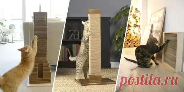 10 способов сделать когтеточку для кошки своими руками - медиаплатформа МирТесен